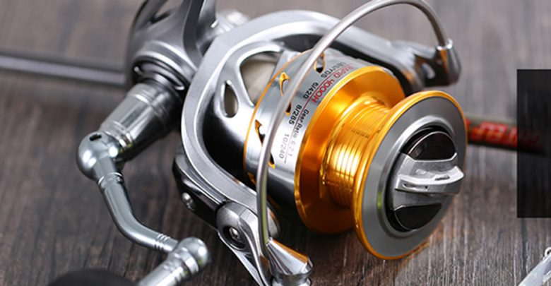 Best Spinning Reels for Fishing